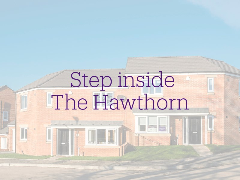 Inside the Hawthorn